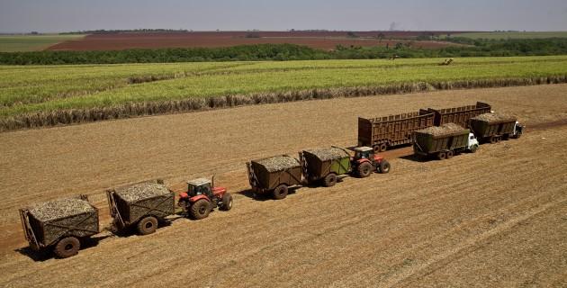 2010-03-18 Moagem Cana Transporte Trator Logistica Colheita Arte