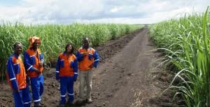 EcoEnergy África AB