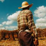 Produtor de cana paraguaio