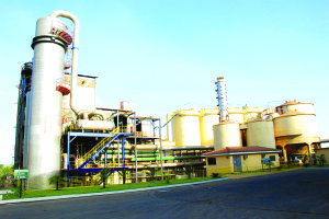 2008-10-15 Usina Sao Jose Estiva Destilaria Tratamento Caldo (5)