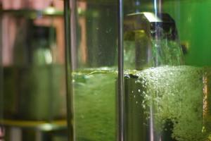 2009-04-17 Etanol Alcool Usina Santa Candida Etanol Destilaria (5)