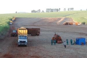 Moagem alcançou 117,50 milhões de toneladas de cana
