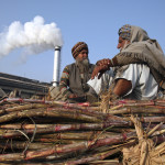 Farmers sit on a heap of sugarcanes loaded on a tractor outside of a sugar mill at Morinda