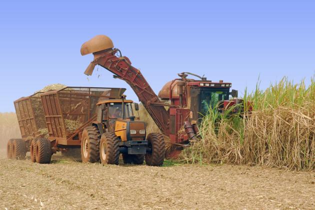 2007-10-23 Vista Usina Coruripe Colhedora Iturama