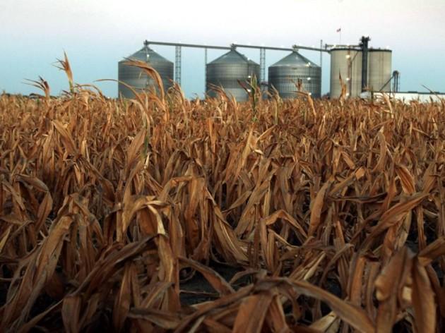 news-ethanol-drought-crops_58953_990x742