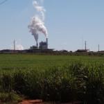 2011-08-04 Adecoagro Mato Grosso Sul (4)