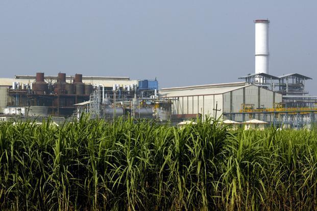Sugar Factory_4C_--621x414 (1)