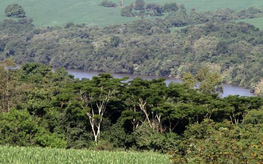 Menos de 18% das propriedades rurais do Paraná estão cadastrada no CAR