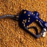Os EUA se antecipam às mudanças na política energética do Japão para negociar mais venda de etanol
