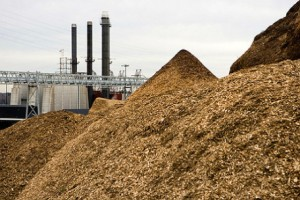biomass-power-plant-456x304