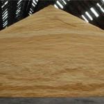 sugarstockbulk