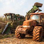 agricola1